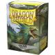 Protège-cartes Dragon Shield Matte